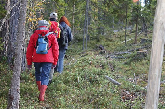 Eng - Hike the Uppland Trail - ctl00_cph1_mainimg